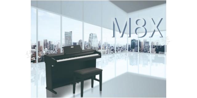 湖北买什么钢琴入门钢琴 来电咨询 上海华新乐器供应