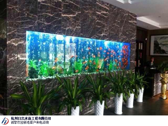 台州景观鱼池鱼缸租赁公司 信息推荐「杭州日出水族工程供应」