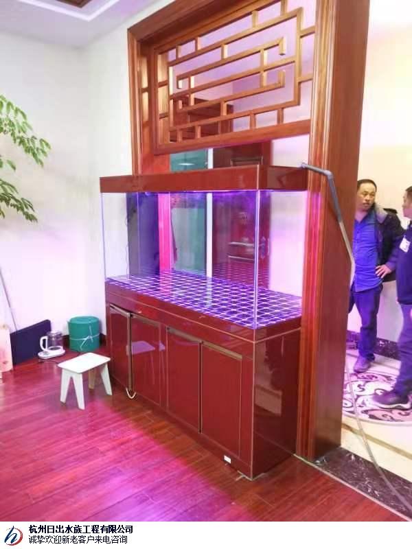 芜湖家庭观赏鱼缸灯箱维修 真诚推荐「杭州日出水族工程供应」