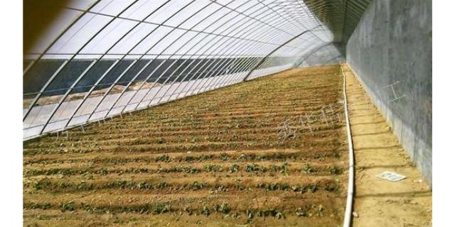 大兴安岭玉米秸秆草殖饲料 欢迎来电「秀华秸秆加工厂供应」