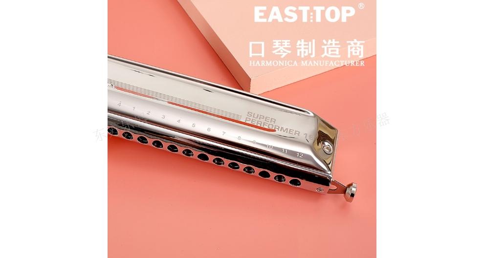 上海半音階口琴培訓 歡迎咨詢「江蘇東方樂器供應」