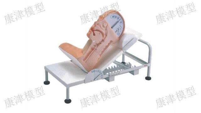 福建婴儿护理模型「康津供」