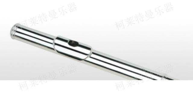 潍坊销售学生用长笛哪家口碑好 长笛「柯莱特曼供」