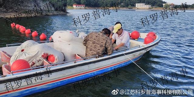 芜湖圆形塑料浮球价格 诚信为本「科罗普供」