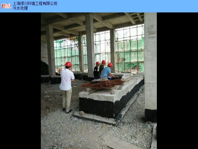 湖北生物柴油设备免费咨询 上海绿川环境工程供应