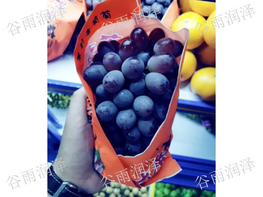 苍山水果蔬菜批发,果