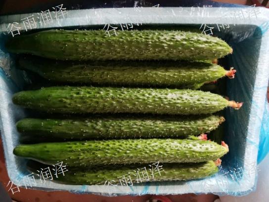 临沂苍山蔬菜批发价格,蔬菜