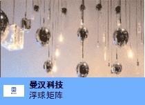 闵行区销售机械矩阵球联系人 欢迎来电「曼汉机器人科技供应」