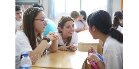 云南欧美学生汉语小班课优惠报名 来电咨询 胡同语言进修学院供应