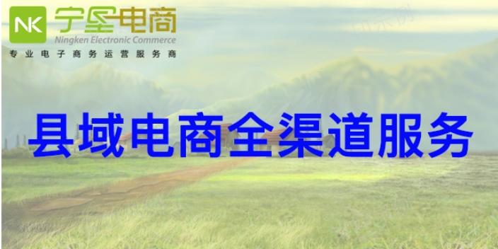 西夏区整体县域电商哪家公司好 宁夏宁垦电子商务供应