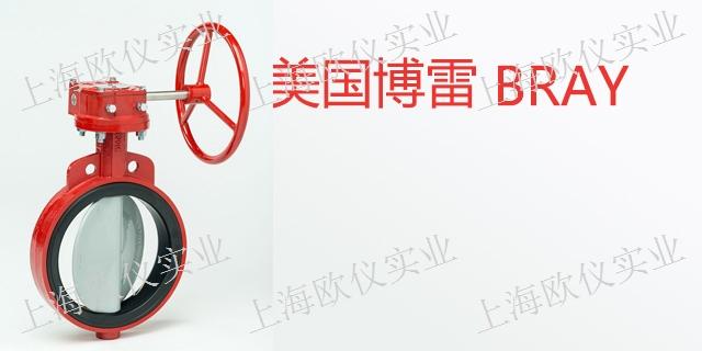 广东美国博雷BRAY原装美国博雷阀门制作厂家 欢迎来电「欧仪供」