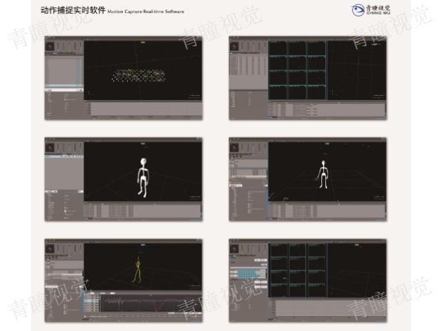 体能光学动作捕捉软件偶像直播 值得信赖「青瞳供」
