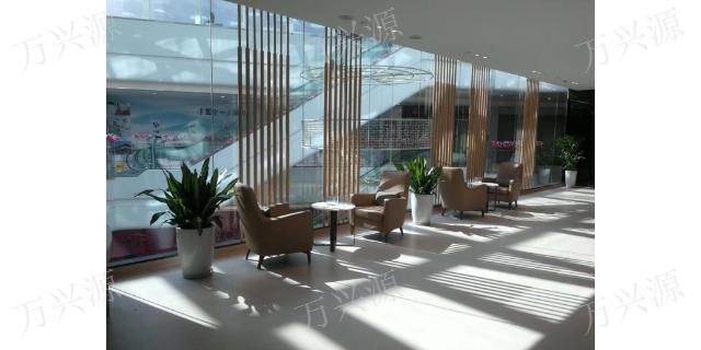 石狮绿植摆放设计 欢迎咨询「泉州万兴源绿植花卉供应」