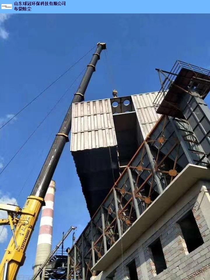 丽江中央除尘设备价格 和谐共赢「山东球冠环保科技供应」