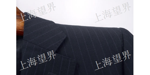 北京日本进口硬挺剂厂家直销「望界供」