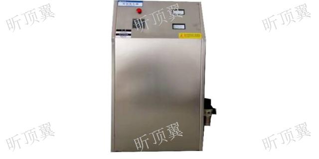 江苏臭氧发生器维保 上海顶翼环保科技供应