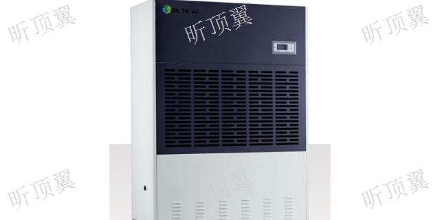 江苏小型除湿机可以定做吗 上海顶翼环保科技供应