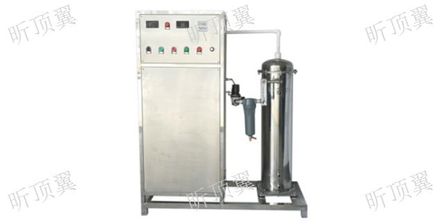 上海臭氧发生器出厂价 上海顶翼环保科技供应
