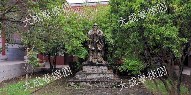 合肥轻养生运动 真诚推荐「上海德圆体育文化供应」