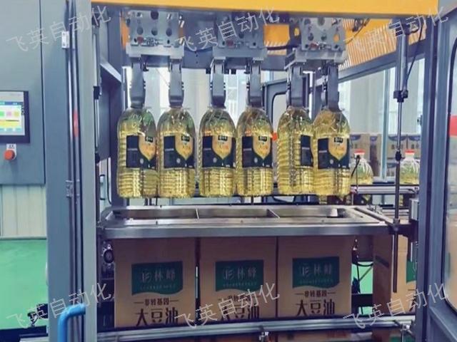 湖北开装封一体机装箱机生产厂家 欢迎来电 飞英自动化设备供应