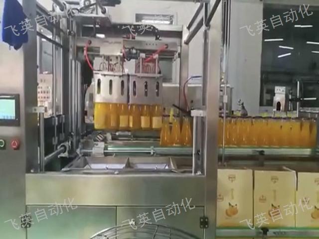 海南矿泉水装箱机出厂价 贴心服务 飞英自动化设备供应