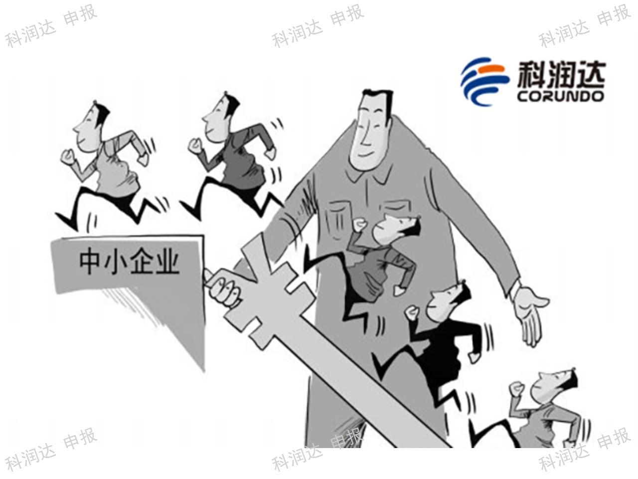 上海代理技术创新项目申报 服务至上 上海科润达供应