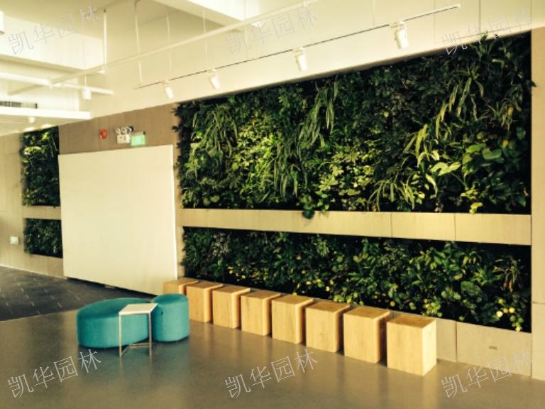 昆山立体绿化墙「上海凯华园林绿化工程供应」