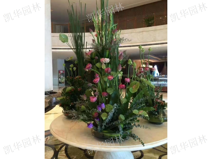 昆山空间花艺市场「上海凯华园林绿化工程供应」