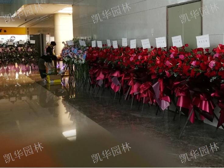 昆山建筑花艺花店「上海凯华园林绿化工程供应」