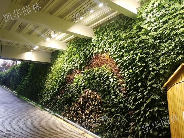 昆山墙面立体绿化案例「上海凯华园林绿化工程供应」