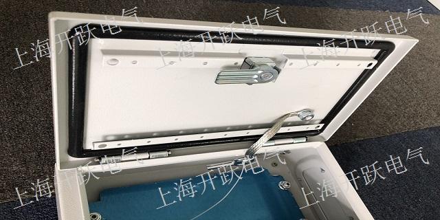 江苏正宗仿威图AE配电箱哪里有 服务至上「上海开跃电气设备供应」