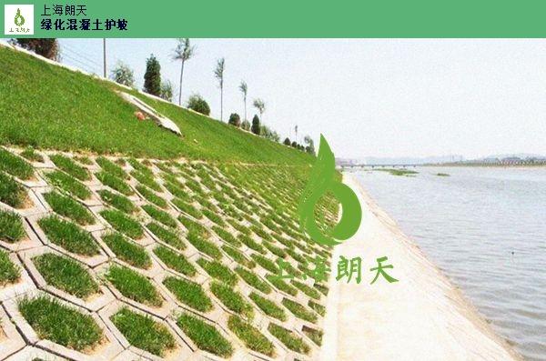 植被型生态混凝土案例,生态混凝土