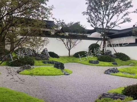 江蘇室內綠化工程宣傳「上海綠通花卉園藝供應」