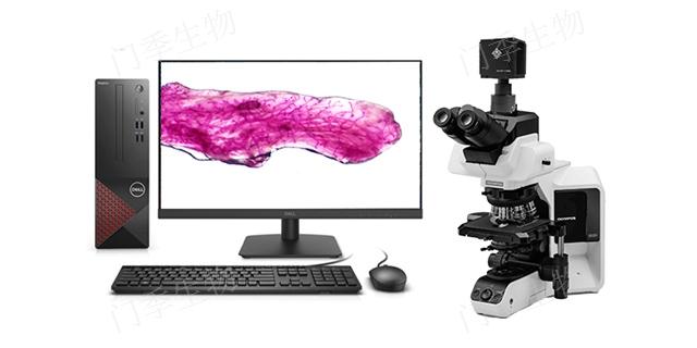 天津CCD相机价格多少 和谐共赢「门季生物科技供应」