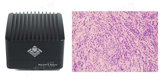 河南尼康SMZ25显微镜市场价格 来电咨询「门季生物科技供应」