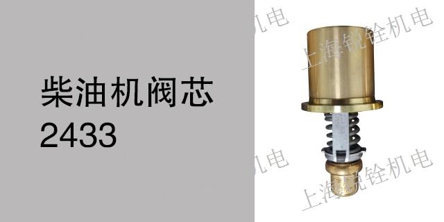广东广州柴油机柴油机阀芯1096 欢迎咨询 锐铨供