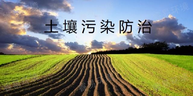 安徽工业土壤检测 铸造辉煌「上海睿易环境科技供应」