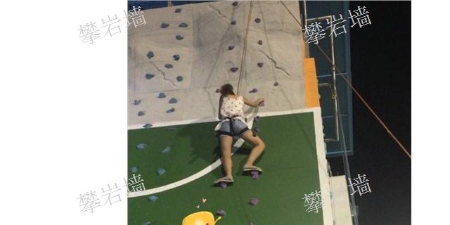 天津小型攀岩墙生产「上海一攀供」