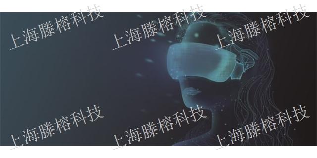 定制AR VR模型,AR VR