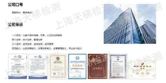 模拟地震检测 欢迎来电「上海天梯检测技术供应」