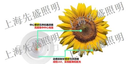 江蘇戶外燈具尺寸 歡迎咨詢「上海先盛照明電器供應」