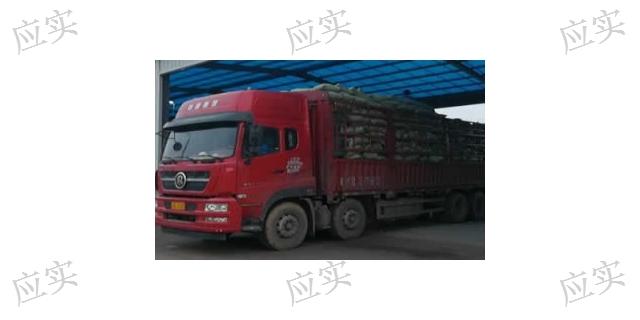 上海市陶粒哪家好 客户至上「上海应实材料科技供应」