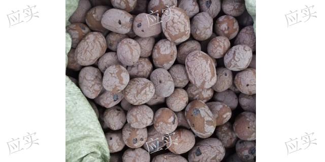上海市绿化陶粒价格
