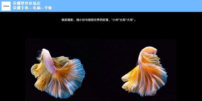 上海哪里可以买到荣耀Magic3是什么摄像头,荣耀Magic3