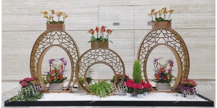 浦东新区室内绿植设计,绿植