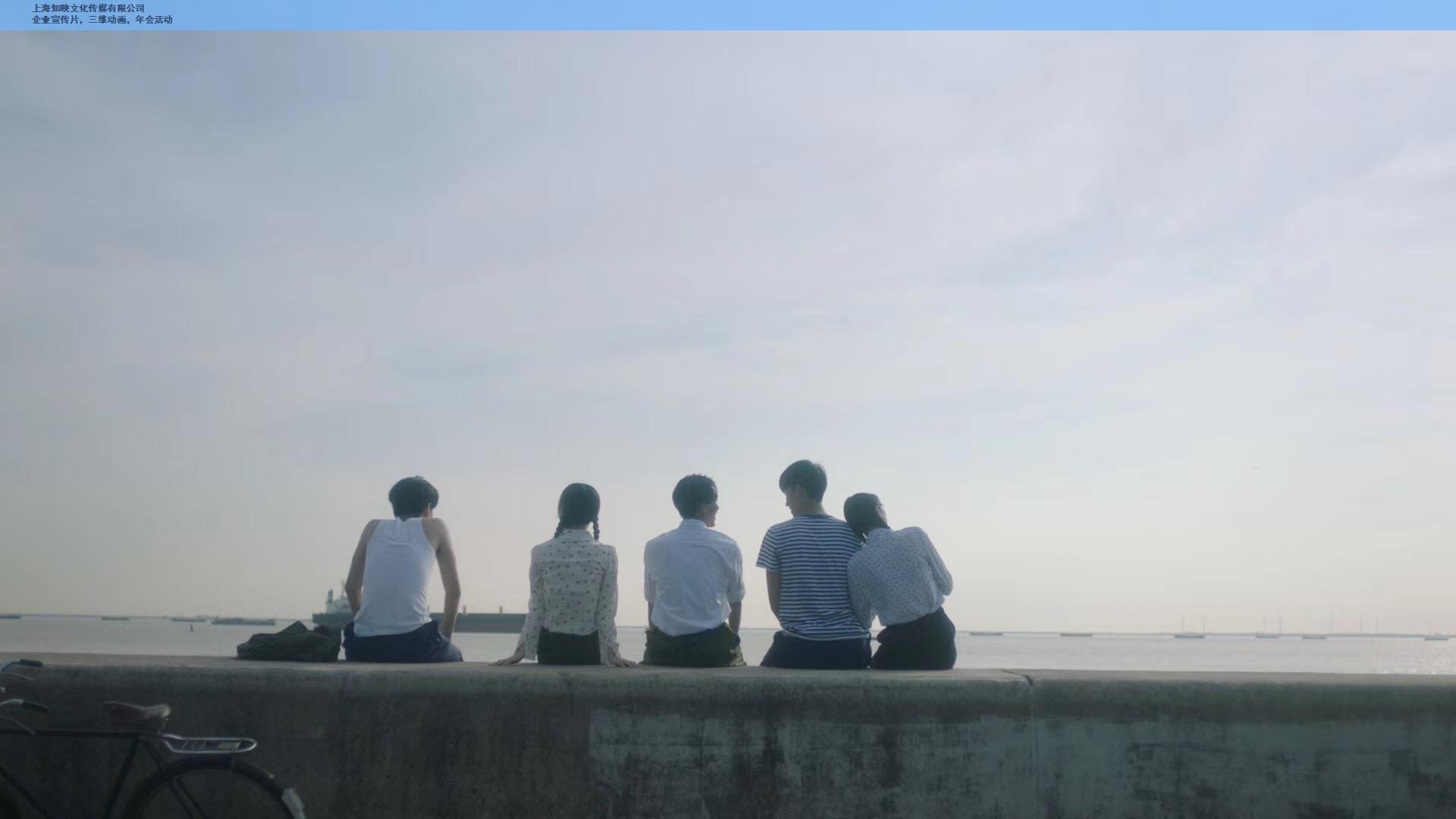 上海活动视频制作咨询报价 值得信赖 上海知映文化传媒供应