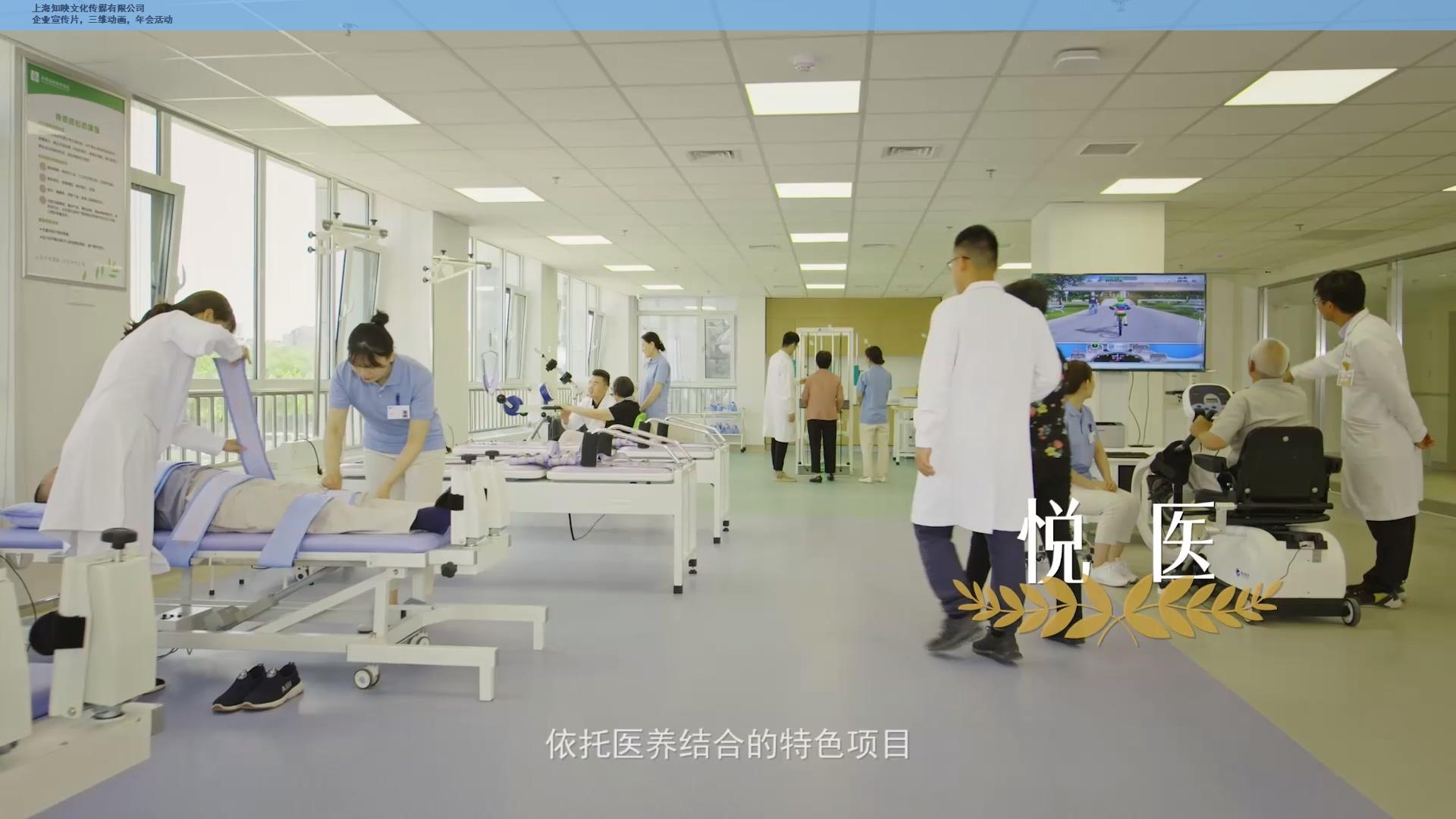 上海活动视频制作工作室 欢迎咨询 上海知映文化传媒供应