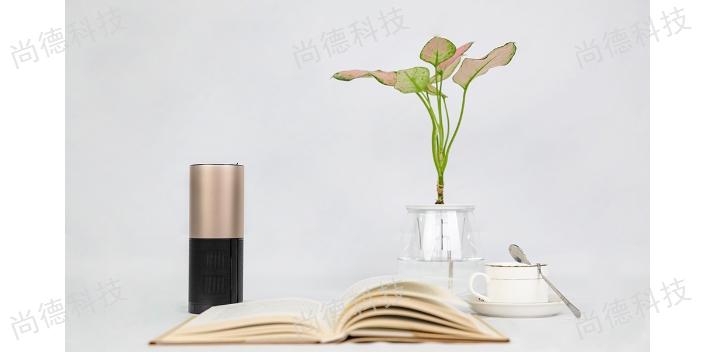 上海UVC紫外线消毒仪真的有用吗 欢迎来电 尚德数据科技供应