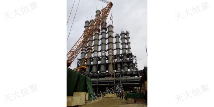 江西精馏塔基本结构 来电咨询 天津天大恒聚工程供应