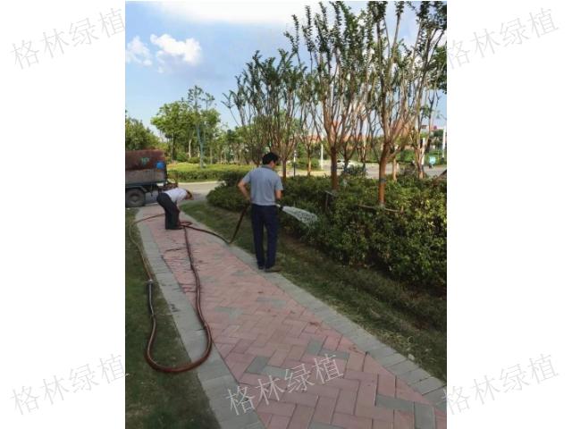 三門縣單位綠化養護商家 抱誠守真「臺州天之江生態科技供應」